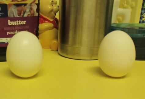 balanced eggs on equinox