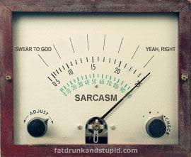 Sarcasm Meter
